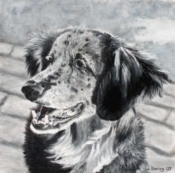 Pet portrait - James Derieg - Artist